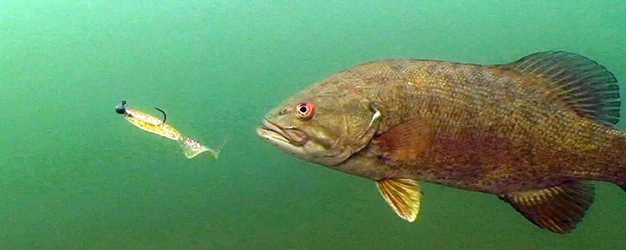 south dakota fishing